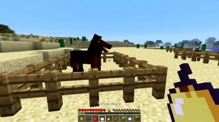 How To Feed Horse Minecraft