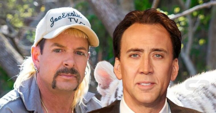 Nicolas Cage Cast As Joe Exotic In Tiger King Scripted Tv Show