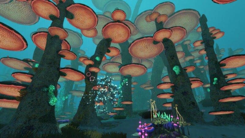 Location of How to Get Diamonds in Subnautica, Mushroom Forest